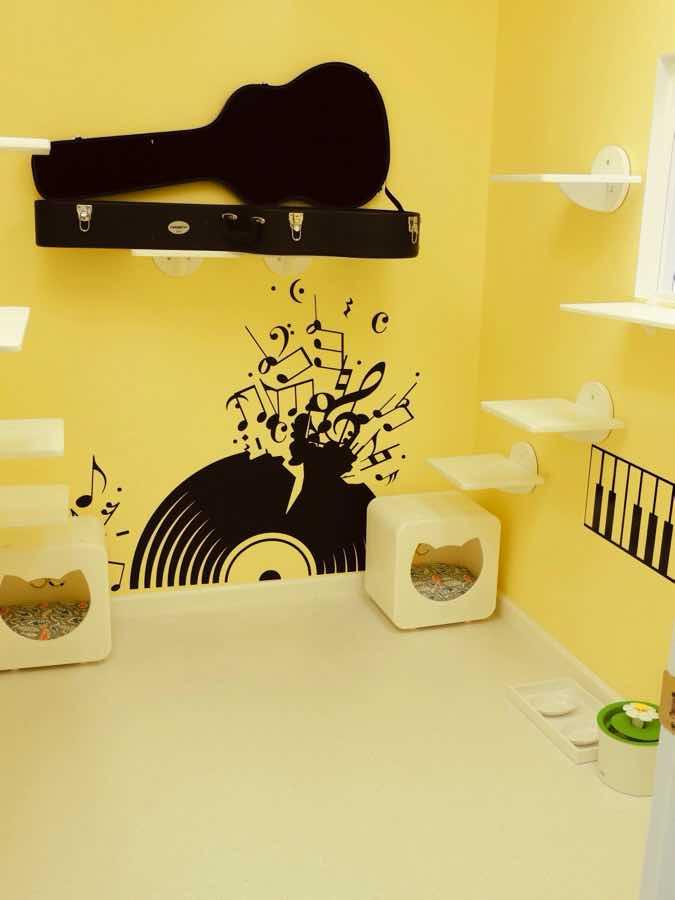 happy-cat-room-design-20201006-004