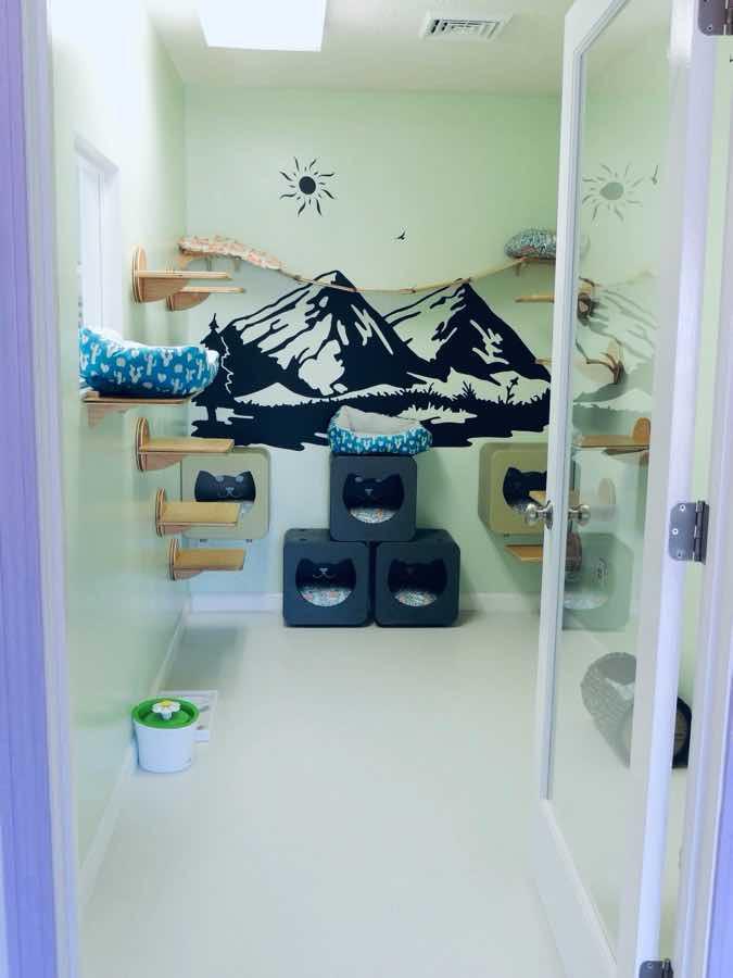 happy-cat-room-design-20201006-006