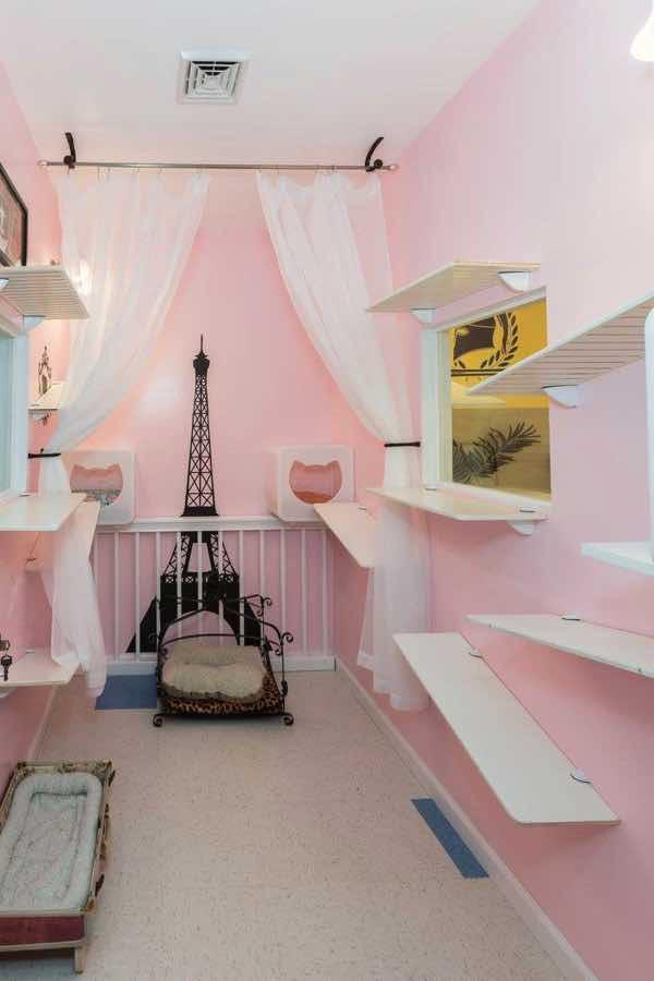 happy-cat-room-design-20201006-007